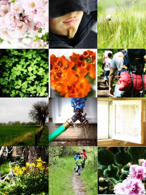 Wonder collage_2
