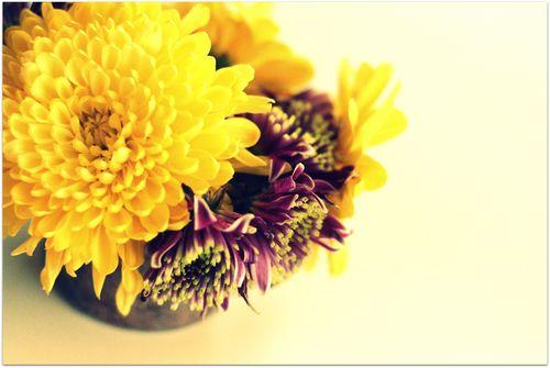 Easter flowers 3