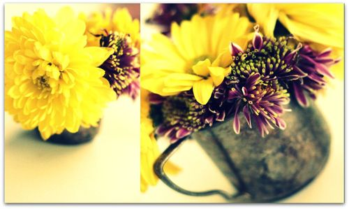 Easter flowers 1