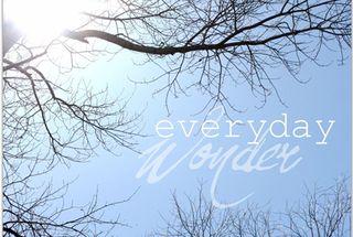 Everyday wonder_2b