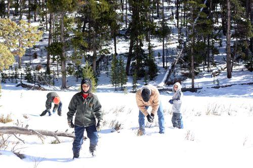Sibley snow_1