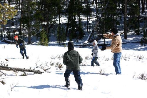 Sibley snow_4